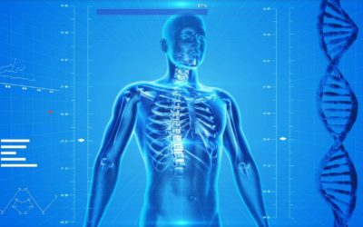 New bone density health screening has major roll out in Fairbanks, AK
